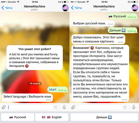 boty-telegram