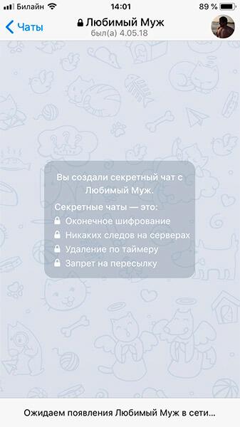 секретные чаты в Телеграм